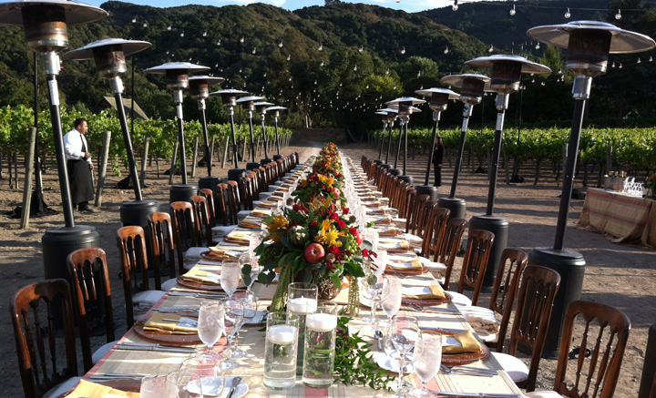 Folktale Winery and Classic Catering set up for Corporate Partynner in vineyard